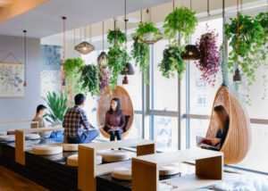 hanging plants 300x214 - 5 Office Décor Trends of 2020 to Improve Productivity and Employee Welfare